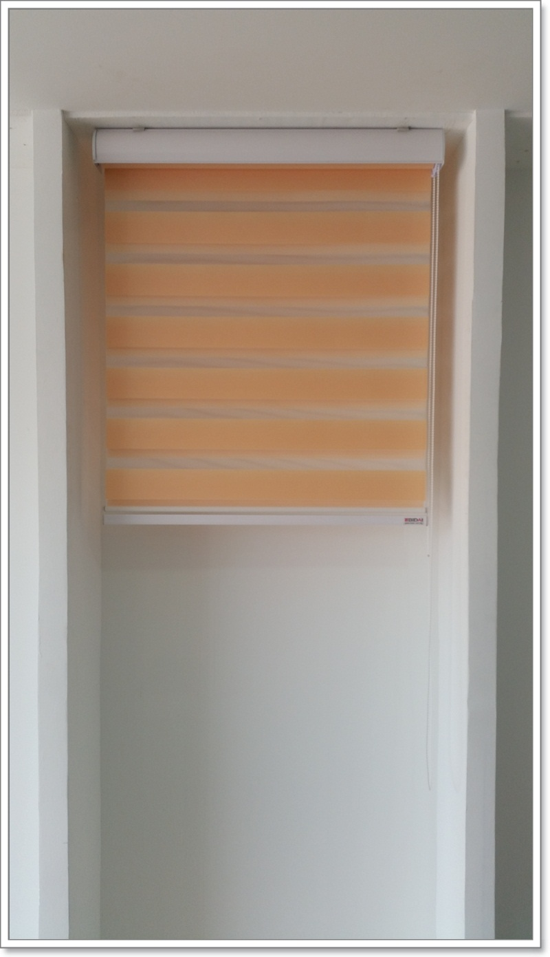 Zebra Blinds Suitable For All Size Of Window Panel Bidai